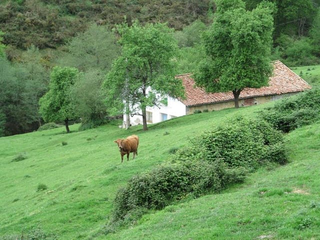 3 camera da letto Finca/Casa di Campagna in vendita in Valdaliga - 148.000 € (Rif: 4510155)
