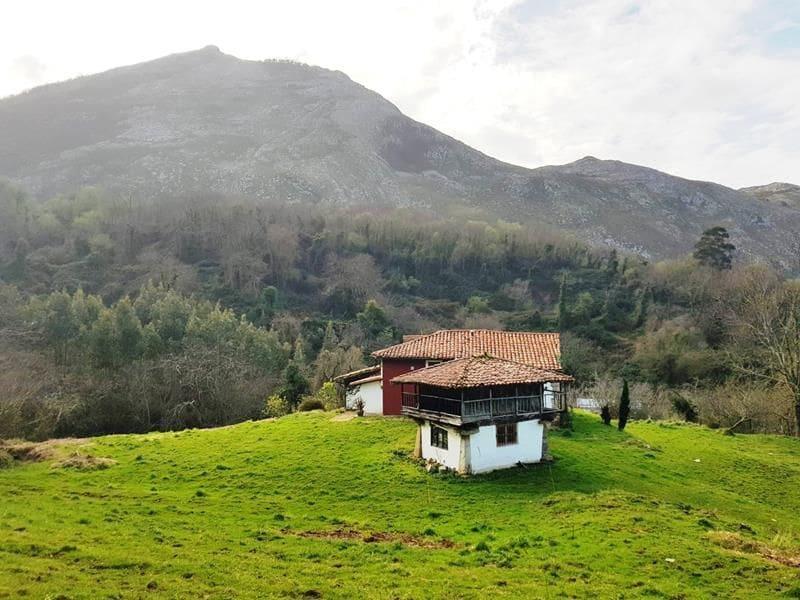 4 chambre Finca/Maison de Campagne à vendre à Caravia - 210 000 € (Ref: 5260222)