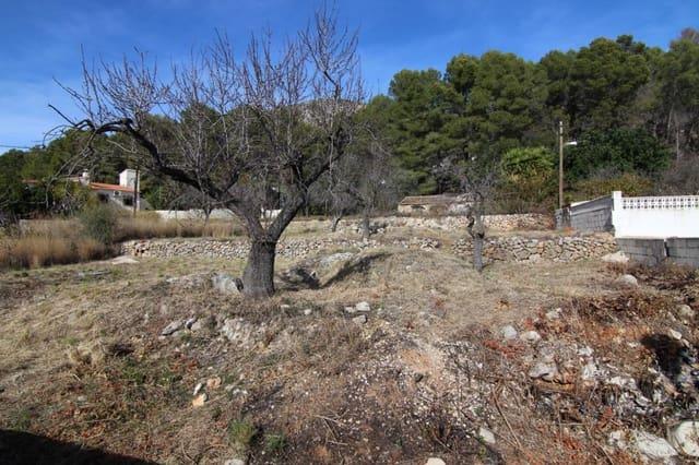 Działka budowlana na sprzedaż w Alcalali / Alcanali - 52 000 € (Ref: 4185743)