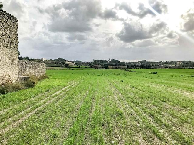 Terreno para Construção para venda em Lloret de Vista Alegre - 300 000 € (Ref: 3623720)