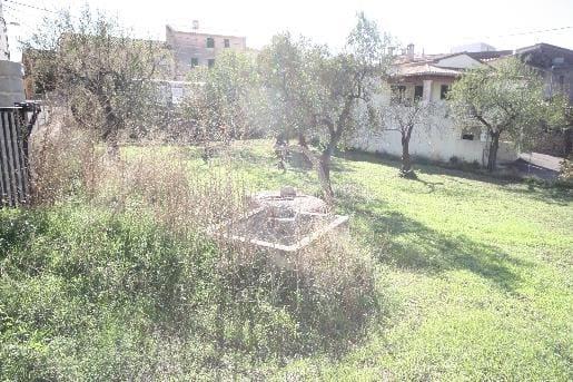 Terre non Aménagée à vendre à Calvia - 375 000 € (Ref: 1882372)