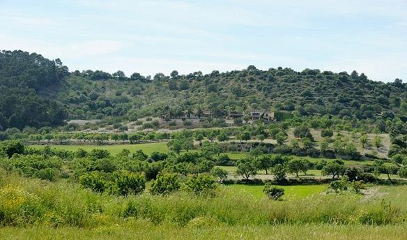 Ubebygd land til salgs i Sant Joan - € 850 000 (Ref: 1882390)